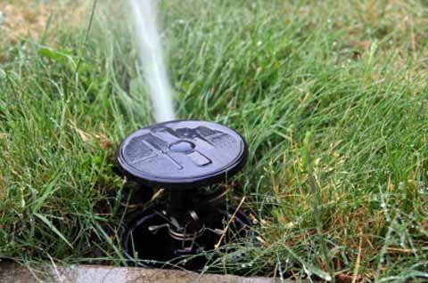 3 Reasons You Should Fix A Broken Sprinkler Head Doctor